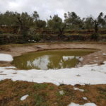 De vijver is ook compleet gevuld met smeltwater